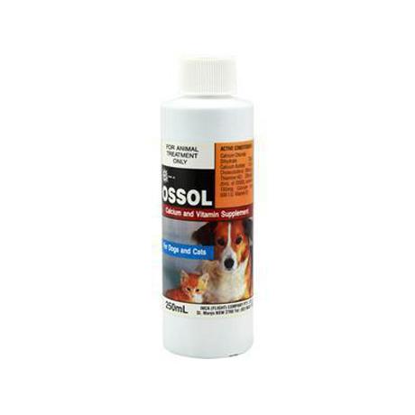 Inca - Ossol - Calcium & Vitamin Supplement 250ml