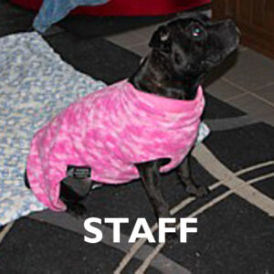 Staff Already Made Reversible Polar Fleece Coats