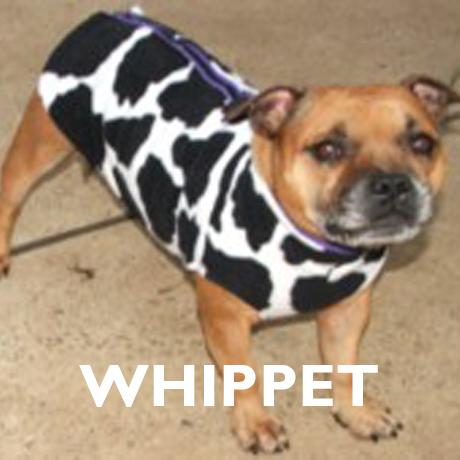 Whippet Already Made Polar Fleece Vest Coats