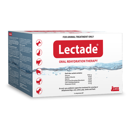 Lectade Oral Rehydration Sachets For Dogs 64gm x 12