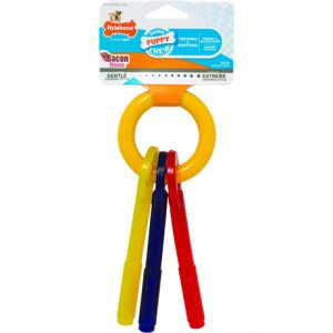 Nylabone Puppy Chew Keys Large