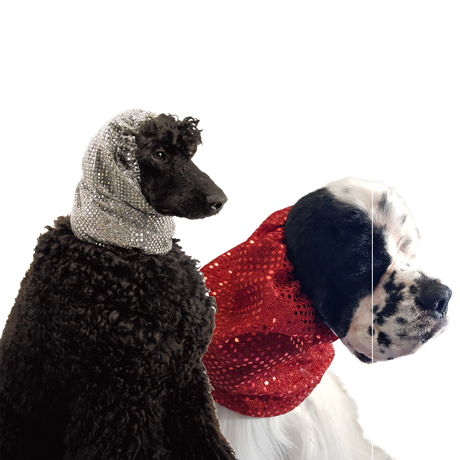 Show Tech Snood Luxe Fancy Ear Covers For Dogs Group