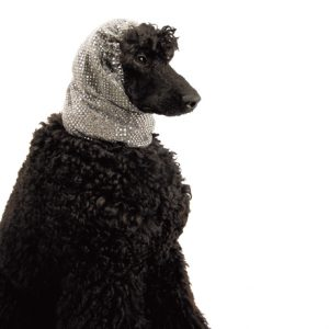 Show Tech Snood Luxe Fancy Ear Covers For Dogs Silver